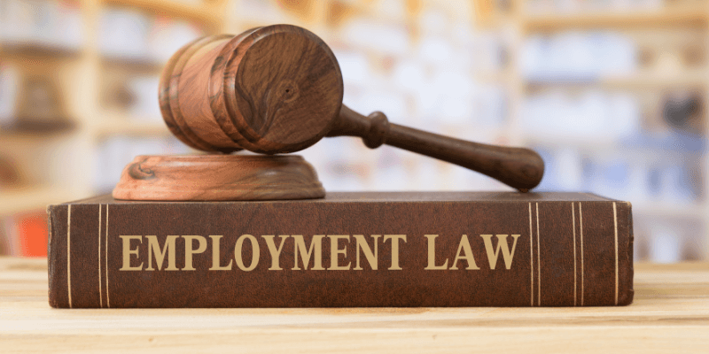 employment law may