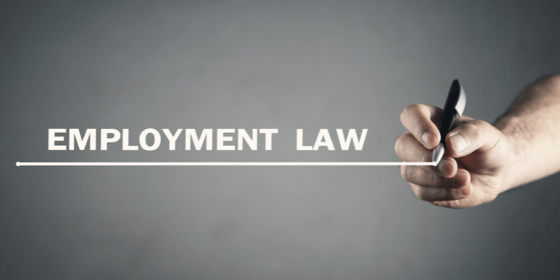 employment law update july